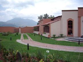 Sinai casino tepic
