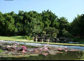 Huayac n cuernavaca morelos Jardin villa serrano cuernavaca