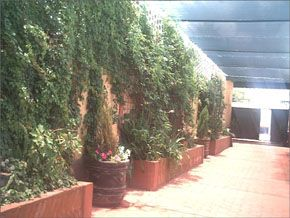 M s salones en aguascalientes for Jardin quinta esmeralda aguascalientes