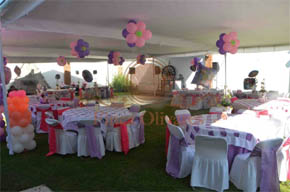 Finca olivares xochimilco salones para eventos for Jardin xochimilco mexicali