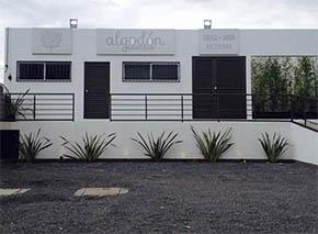 Algodon Eventos Terraza Jardin Queretaro Salones Para Eventos
