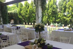 Jardin De Eventos El Arbol Queretaro Salones Para Eventos