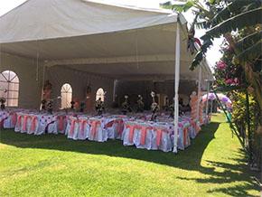 Jardin la feria de las flores xochimilco salones para eventos for Jardin xochimilco mexicali