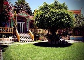 Jardin de los anturios xalapa salones para eventos for Jardines de anturios