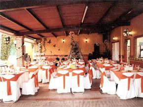 Jardin Terraza Ideal San Pedro Cholula Salones Para Eventos